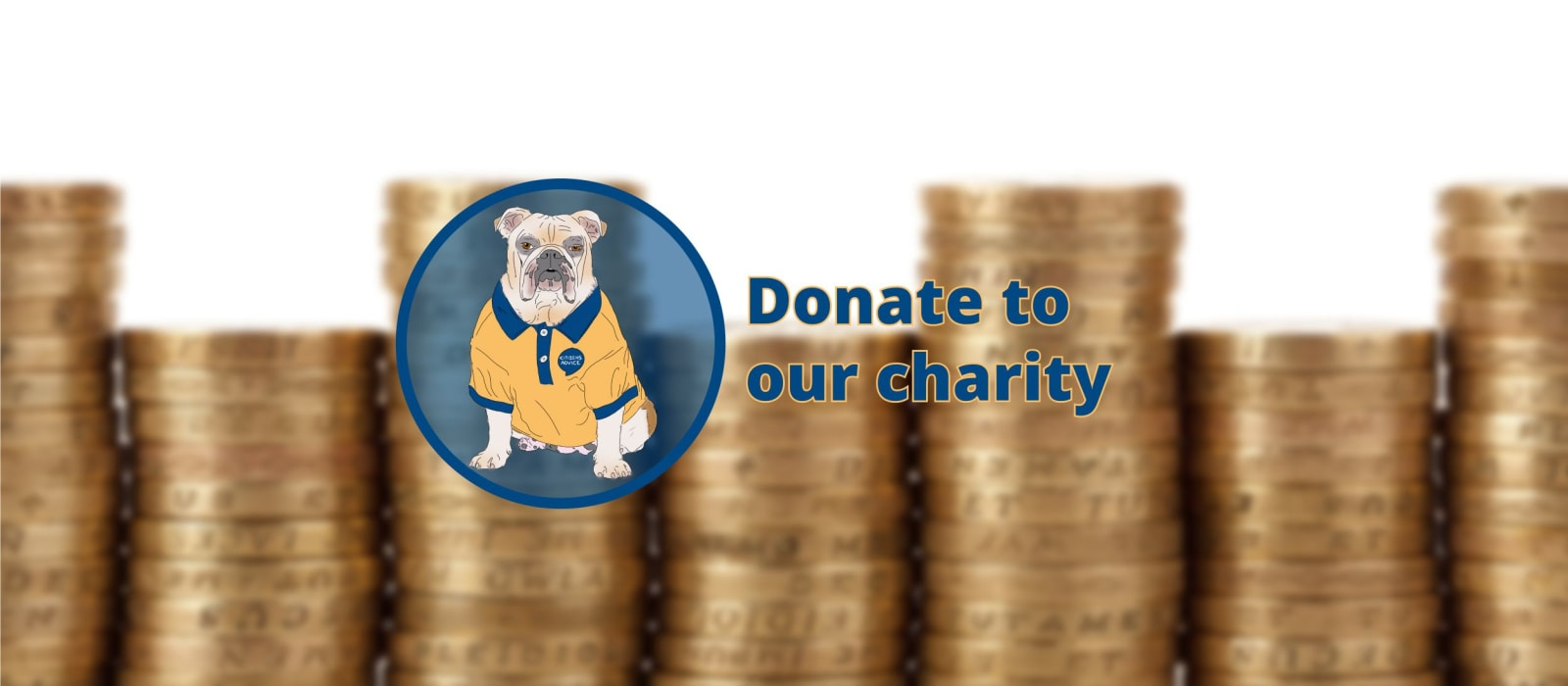 Donate To Citizens Advice Isle of Wight